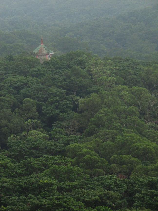 pagoda11